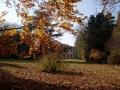 5c-autunno