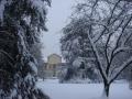 5d-inverno