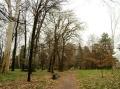 11-visita-guidata-giardino-villa_-cusani-tittoni-traversi-9-marzo_-2013-regis_
