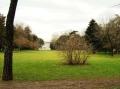 9-visita-guidata-giardino-villa_-cusani-tittoni-traversi-9-marzo_-2013-regis_