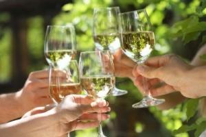 regis festeggia bando bicchieri