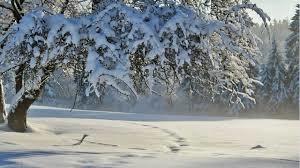eventi invernali